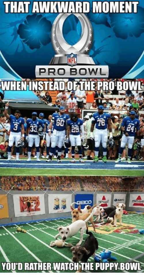 NFL Pro Bowl: THAT AWKWARD MOMENT  NFL  PRO BOWL  WHENINSTEADOF THE PROBOWL  BC  YOU'D RATHER WATCH THE PUPPY BOWL