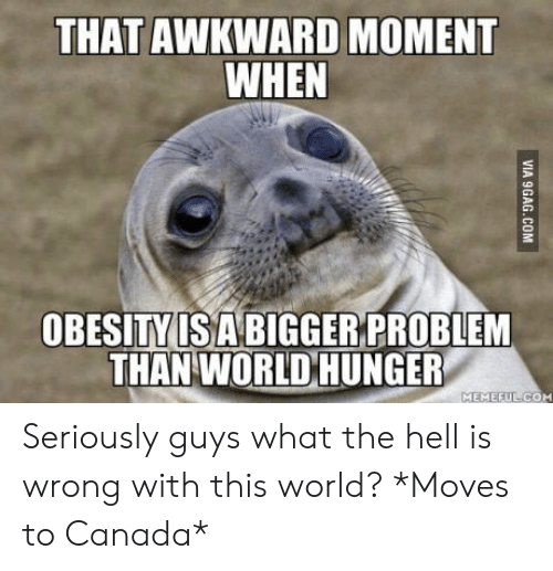 Seriously Guys: THAT AWKWARD MOMENT  WHEN  OBESITY ISA BIGGER PROBLEM  THAN WORLD HUNGER  MEMEFUL COM Seriously guys what the hell is wrong with this world? *Moves to Canada*