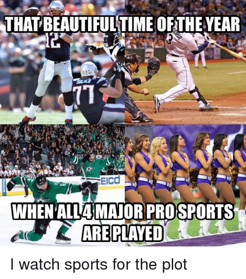 Beautiful, Memes, and Sports: THAT  BEAUTIFUL TIME OF THE YEAR  WHEN ALL4MAJORPRO SPORTS  ARE PLAVED I watch sports for the plot
