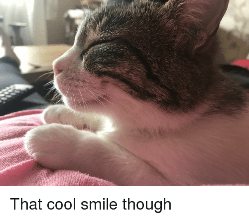 Cool, Smile, and Though: That cool smile though