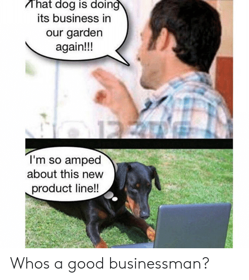 amped: That dog is doin  its business in  our garden  again!!!  I'm so amped  about this new  product line!! Whos a good businessman?