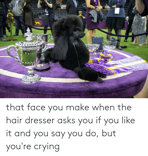 That Face You Make When: that face you make when the hair dresser asks you if you like it and you say you do, but you're crying