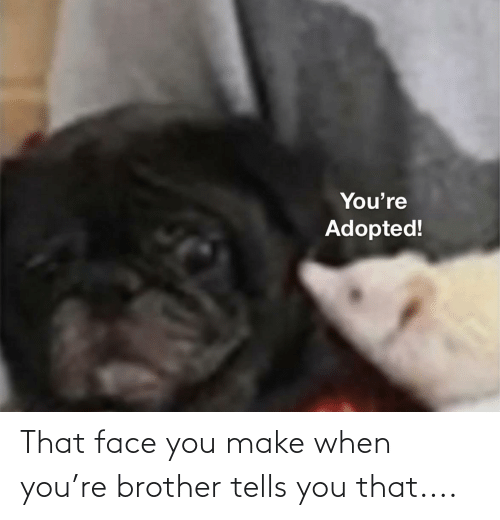 That Face You Make When: That face you make when you're brother tells you that....