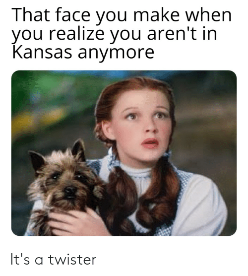 That Face You Make When: That face you make when  you realize you aren't in  Kansas anymore It's a twister