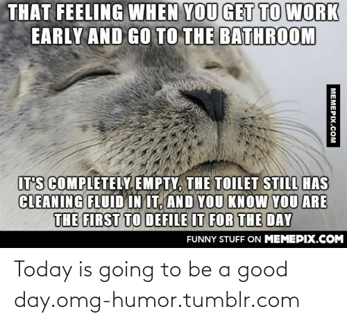 defile: THAT FEELING WHEN YOU GET TO WORK  EARLY AND GO TO THE BATHROOM  IT'S COMPLETELY EMPTY, THE TOILET STILL HAS  CLEANING FLUID IN IT, AND YOU KNOW YOU ARE  THE FIRST TO DEFILE IT FOR THE DAY  FUNNY STUFF ON MEMEPIX.COM  MEMEPIX.COM Today is going to be a good day.omg-humor.tumblr.com