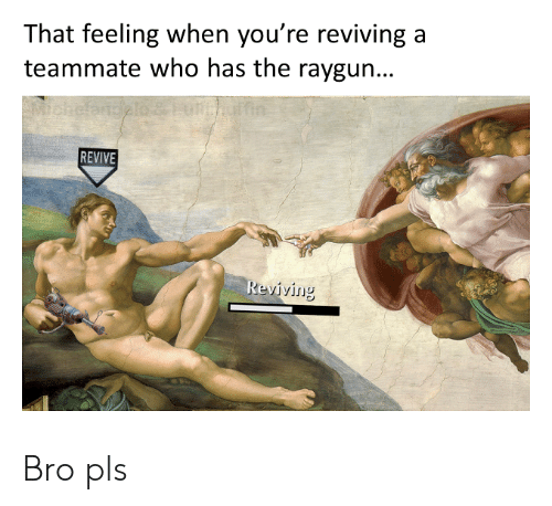 raygun: That feeling when you're reviving  teammate who has the raygun...  FMchefan  REVIVE  Reviving Bro pls