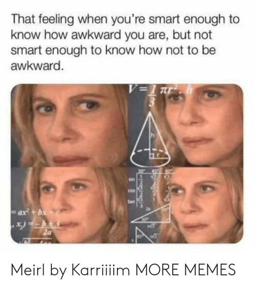sus: That feeling when you're smart enough to  know how awkward you are, but not  smart enough to know how not to be  awkward.  V=1 ur  tan  ax+b  SUS Meirl by Karriiiim MORE MEMES