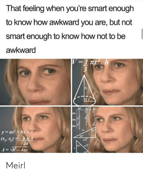That Feeling: That feeling when you're smart enough  to know how awkward you are, but not  smart enough to know how not to be  awkward  V =1 rr2 . h  3  30  45  60  2  1  sin  V2  COS  V3  an  y=ax + bx +c  60  30  XV3  2a  45 S  4=\b-4ac Meirl