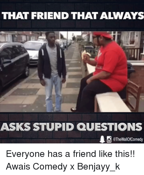 stupid questions: THAT FRIEND THAT ALWAYS  ASKS STUPID QUESTIONS  ˊ @TheWallOfComedy Everyone has a friend like this!!  Awais Comedy x Benjayy_k