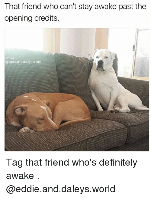 Opening Credits: That friend who can't stay awake past the  opening credits.  @bark  @eddie and daleys.world Tag that friend who's definitely awake . @eddie.and.daleys.world