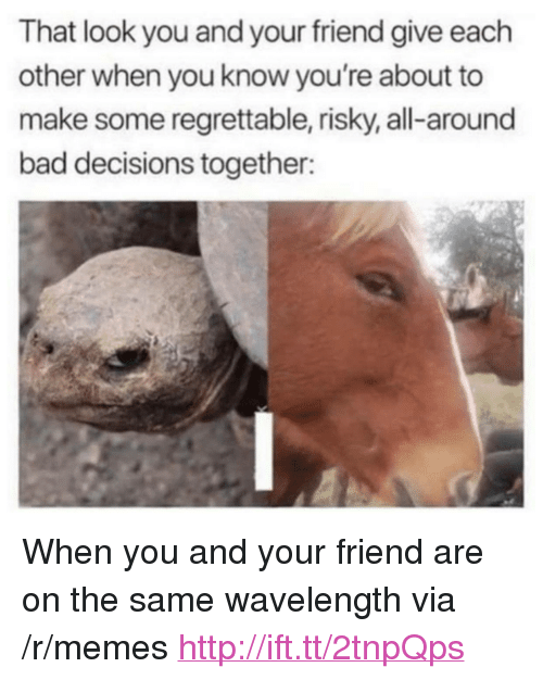 "Regrettable: That look you and your friend give each  other when you know you're about to  make some regrettable, risky, all-around  bad decisions together: <p>When you and your friend are on the same wavelength via /r/memes <a href=""http://ift.tt/2tnpQps"">http://ift.tt/2tnpQps</a></p>"