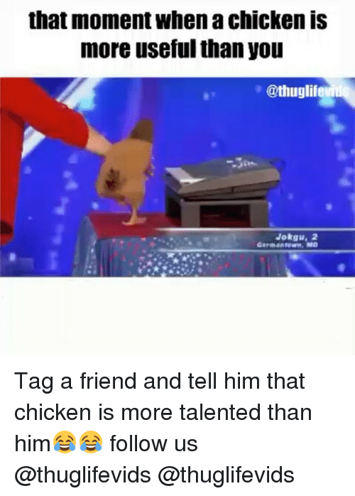 Memes, Chicken, and 🤖: that moment When chicken IS  more useful than you  @thuglif  P Jokgu, 2  Germantown, MD Tag a friend and tell him that chicken is more talented than him😂😂 follow us @thuglifevids @thuglifevids