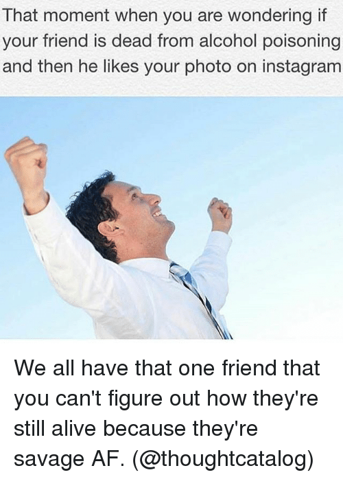 Af, Alive, and Instagram: That moment when you are wondering if  your friend is dead from alcohol poisoning  and then he likes your photo on instagram We all have that one friend that you can't figure out how they're still alive because they're savage AF. (@thoughtcatalog)