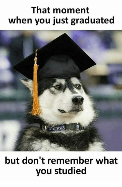 Memes, 🤖, and Remember: That moment  when you just graduated  but don't remember what  you studied