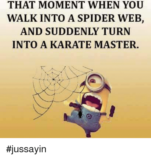 Spider Webbed: THAT MOMENT WHEN YOU  WALK INTO A SPIDER WEB,  AND SUDDENLY TURN  INTO A KARATE MASTER. #jussayin