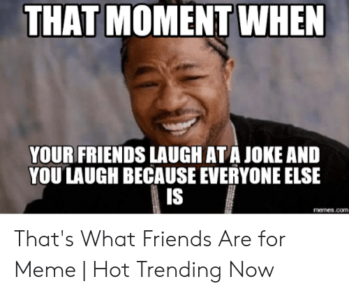 Friends, Meme, and Memes: THAT MOMENT WHEN  YOUR FRIENDS LAUGH AT A JOKE AND  YOU LAUGH BECAUSE EVERYONE ELSE  IS  memes.coTI. That's What Friends Are for Meme | Hot Trending Now