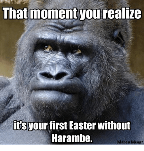 that moment you realize: That moment you realize  its  your first Easter without  Harambe.  Make a Meme