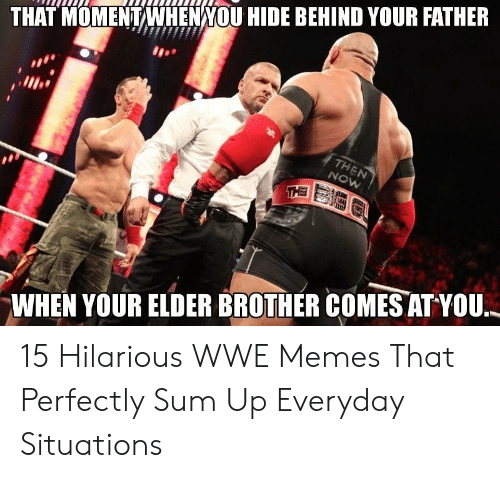 Hilarious Wwe: THAT MOMENTWHENNOU HIDE BEHIND YOUR FATHER  WHEN YOUR ELDER BROTHER COMES ATYOU, 15 Hilarious WWE Memes That Perfectly Sum Up Everyday Situations