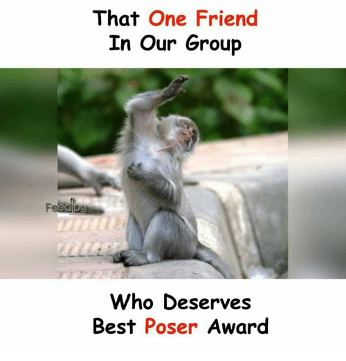 Memes, Best, and 🤖: That One Friend  In Our Group  Who Deserves  Best Poser Award