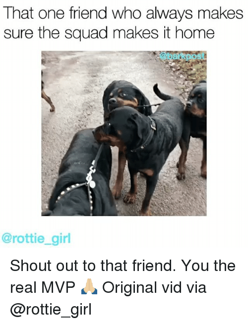 Memes, 🤖, and One: That one friend who always makes  sure the squad makes it home  @rottie girl Shout out to that friend. You the real MVP 🙏🏼 Original vid via @rottie_girl