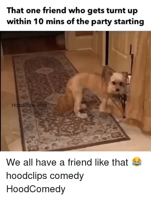 get turnt: That one friend who gets turnt up  within 10 mins of the party starting  dolips com We all have a friend like that 😂 hoodclips comedy HoodComedy
