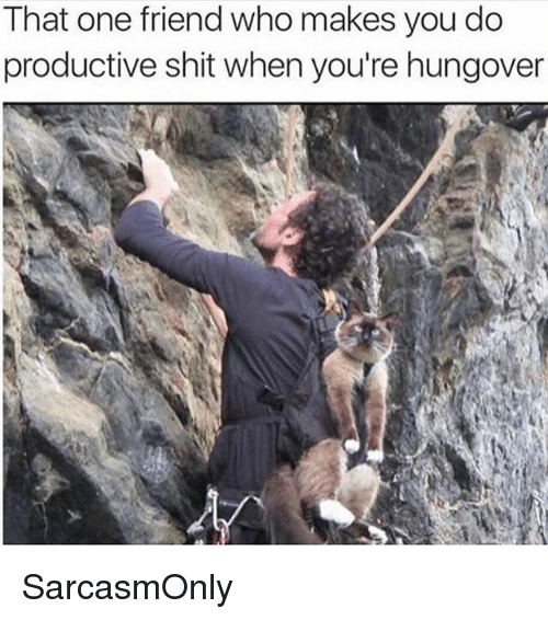 Funny, Memes, and Shit: That one friend who makes you do  productive shit when you're hungover SarcasmOnly