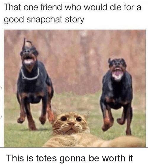 Girl Memes: That one friend who would die for a  good snapchat story This is totes gonna be worth it