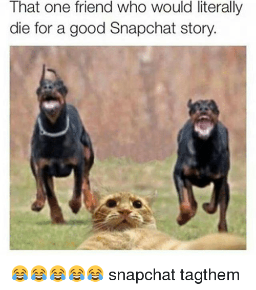 Friends, Snapchat, and Good: That one friend who would literally  die for a good Snapchat story 😂😂😂😂😂 snapchat tagthem