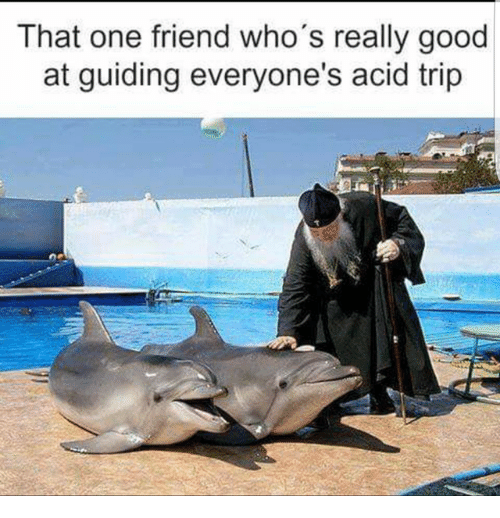 Good, Acid, and One: That one friend who's really good  at guiding everyone's acid trip