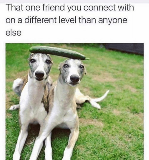 That One Friend: That one friend you connect with  on a different level than anyone  else