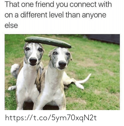 That One Friend: That one friend you connect with  on a different level than anyone  else https://t.co/5ym70xqN2t