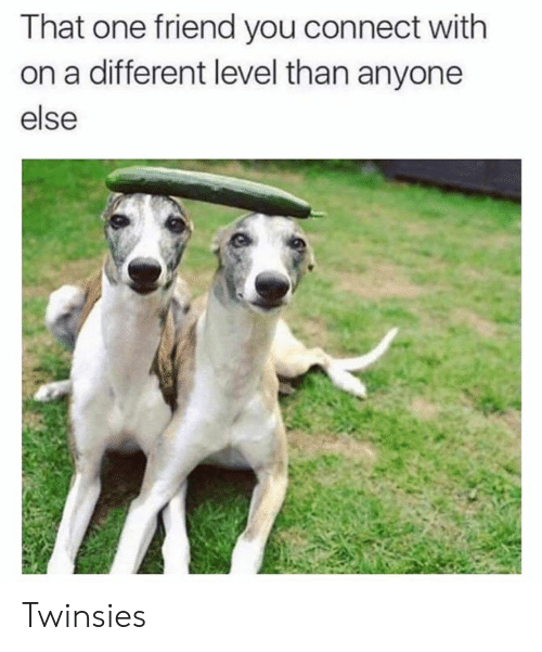 That One Friend: That one friend you connect with  on a different level than anyone  else Twinsies