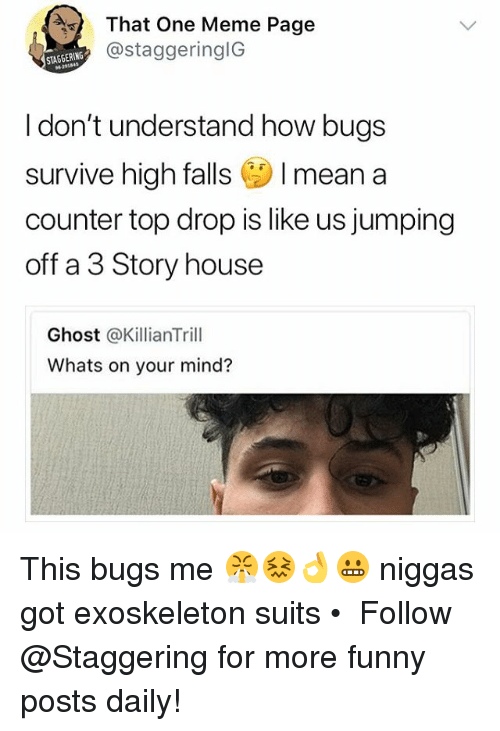 Funny, Meme, and Ghost: That One Meme Page  @staggeringlG  STAGGERING  621141  I don't understand how bugs  survive high falls I mean a  counter top drop is like us jumping  off a 3 Story house  Ghost @KillianTrill  Whats on your mind? This bugs me 😤😖👌😬 niggas got exoskeleton suits • ➫➫➫ Follow @Staggering for more funny posts daily!