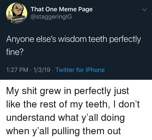 wisdom teeth: That One Meme Page  @staggeringlG  STAGGERING  96-291845  Anyone else's wisdom teeth perfectly  fine?  1:27 PM 1/3/19 Twitter for iPhone My shit grew in perfectly just like the rest of my teeth, I don't understand what y'all doing when y'all pulling them out