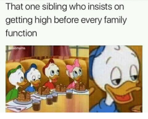 Family, Memes, and 🤖: That one sibling who insists on  getting high before every family  function