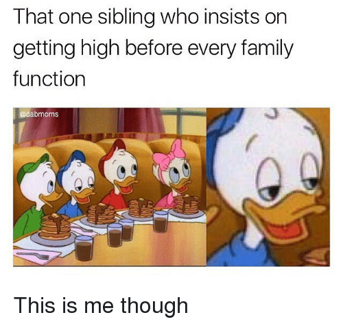 Family, Memes, and 🤖: That one sibling who insists orn  getting high before every family  function  @dabmoms This is me though
