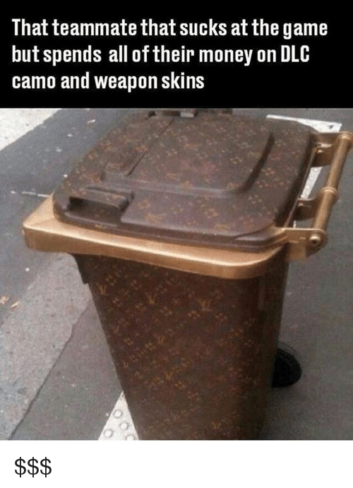 Memes, Money, and The Game: That teammate that sucks at the game  but spends all of their money on DLC  camo and weapon skins $$$