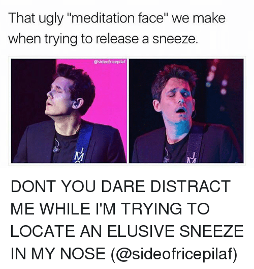 "Memes, Ugly, and Meditation: That ugly ""meditation face"" we make  when trying to release a sneeze.  @sideofricepilaf DONT YOU DARE DISTRACT ME WHILE I'M TRYING TO LOCATE AN ELUSIVE SNEEZE IN MY NOSE (@sideofricepilaf)"