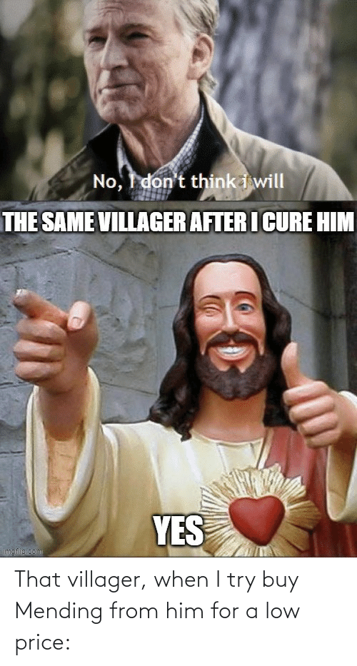I Try: That villager, when I try buy Mending from him for a low price: