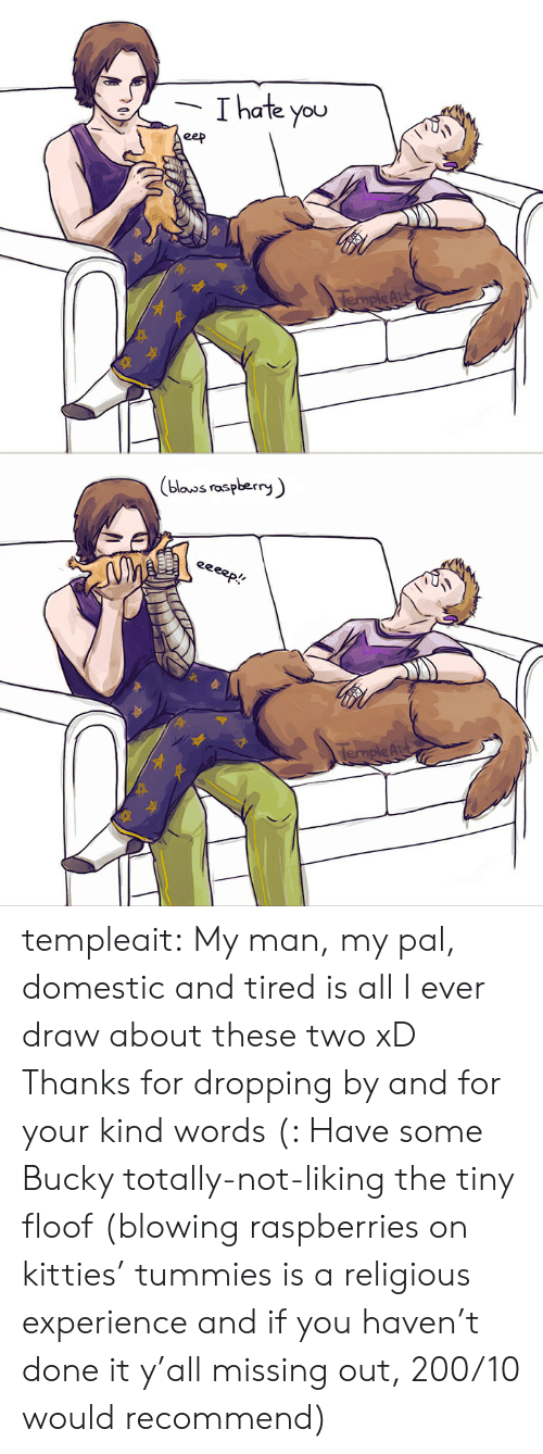 Kind Words: Thate you  eep  TempleAr   (blouos raspberry  eeeep!  TempleAu templeait: My man, my pal, domestic and tired is all I ever draw about these two xD Thanks for dropping by and for your kind words (: Have some Bucky totally-not-liking the tiny floof (blowing raspberries on kitties' tummies is a religious experience and if you haven't done it y'all missing out, 200/10 would recommend)