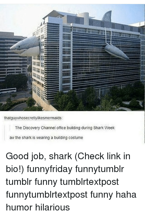 Funny, Memes, and Tumblr: thatguy whosecretlylikesmermaids:  The Discovery Channel office building during Shark Week  aw the shark is wearing a building costume Good job, shark (Check link in bio!) funnyfriday funnytumblr tumblr funny tumblrtextpost funnytumblrtextpost funny haha humor hilarious