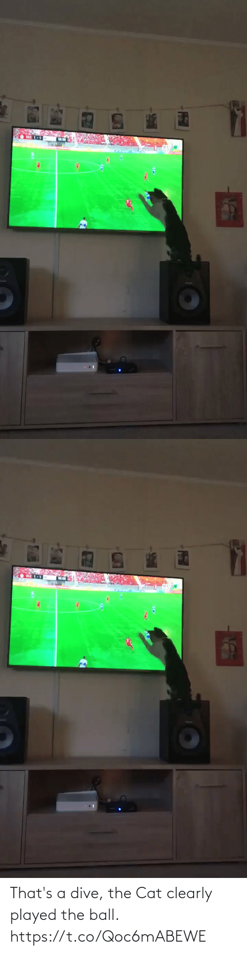Dive: That's a dive, the Cat clearly played the ball.  https://t.co/Qoc6mABEWE