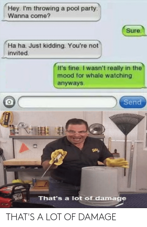 damage: THAT'S A LOT OF DAMAGE
