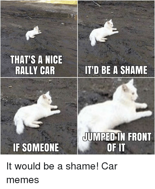 rally car: THAT'S A NICE  RALLY CAR  IT'D BE A SHAME  JUMPED IN FRONT  IF SOMEONE  OF IT It would be a shame! Car memes