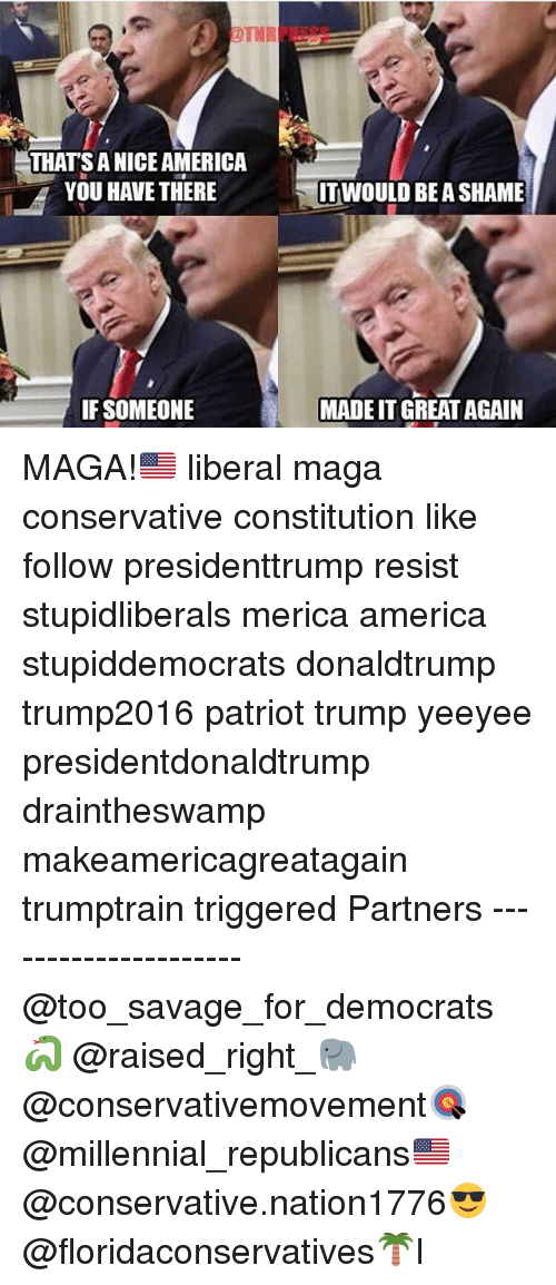 America, Memes, and Savage: THAT'S ANICE AMERICA  YOU HAVE THERE  li IT WOULD BE A SHAME  IF SOMEONE  MADEIT GREAT AGAIN MAGA!🇺🇸 liberal maga conservative constitution like follow presidenttrump resist stupidliberals merica america stupiddemocrats donaldtrump trump2016 patriot trump yeeyee presidentdonaldtrump draintheswamp makeamericagreatagain trumptrain triggered Partners --------------------- @too_savage_for_democrats🐍 @raised_right_🐘 @conservativemovement🎯 @millennial_republicans🇺🇸 @conservative.nation1776😎 @floridaconservatives🌴I