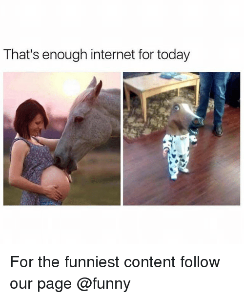 thats enough internet for today: That's enough internet for today For the funniest content follow our page @funny