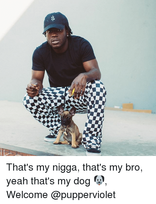 Memes, My Nigga, and Yeah: That's my nigga, that's my bro, yeah that's my dog 🐶, Welcome @pupperviolet