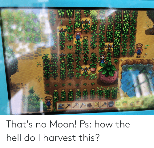 Thats No Moon: That's no Moon! Ps: how the hell do I harvest this?