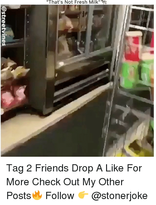 "Fresh, Friends, and Memes: ""That's Not Fresh Milk"" Tag 2 Friends Drop A Like For More Check Out My Other Posts🔥 Follow 👉 @stonerjoke"