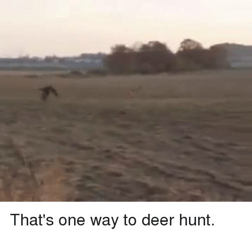 Deer Hunting: That's one way to deer hunt.
